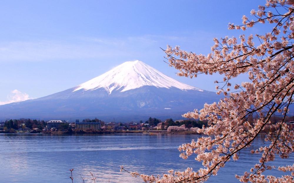 Đại sứ quán gửi cảnh báo tránh lừa đảo du học Nhật Bản